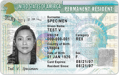 What are the government fees to renew or replace a Green Card?