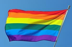 Same-Sex Fiancé