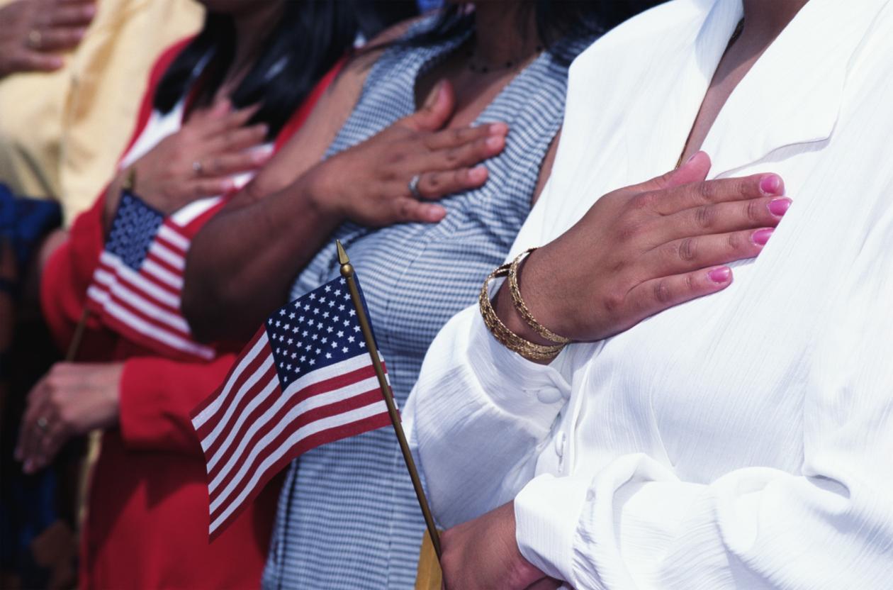 Immigrant influence in politics