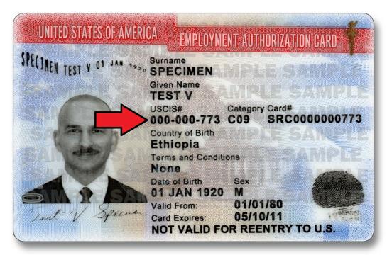 alien registration number on an EAD card